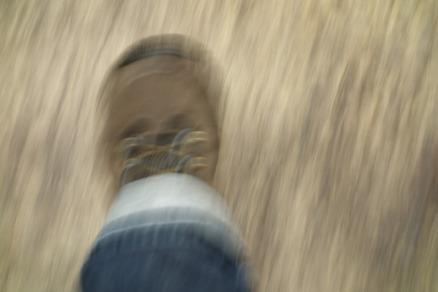 foot-538324_1920